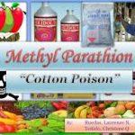 metyl