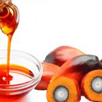 palm_oil_-_khaitanago